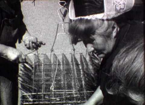 Travail de la sardine et du thon | Jehan Courtin